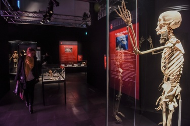 Body Worlds porto antico 022016-4453