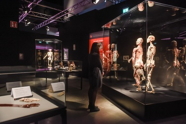 Body Worlds porto antico 022016-4477