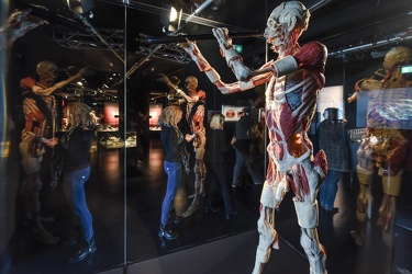 Body Worlds porto antico 022016-4527
