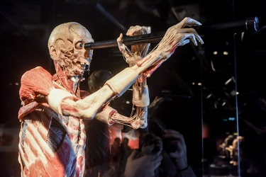 Body Worlds porto antico 022016-4534