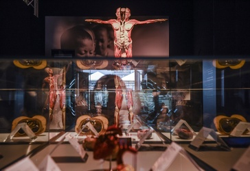Body Worlds porto antico 022016-4547