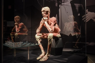 Body Worlds porto antico 022016-4557