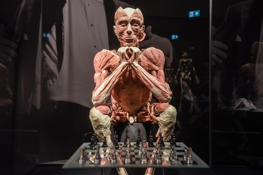 Body Worlds porto antico 022016-4563