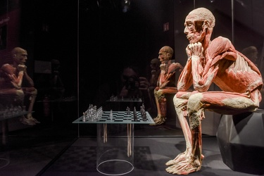 Body Worlds porto antico 022016-4567