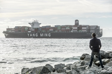 portacontainer Wondrous Yang Ming 17112015-8501