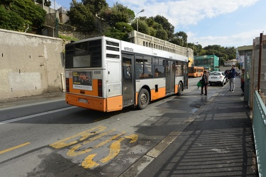 Genova, Quarto - investita dal bus, incidente mortale davanti al