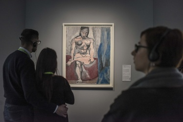 mostra Picasso Ducale 112017-7684