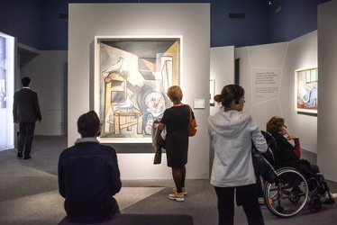 mostra Picasso Ducale 112017-7706