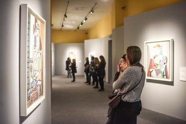 mostra Picasso Ducale 112017-7721