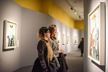 mostra Picasso Ducale 112017-7723