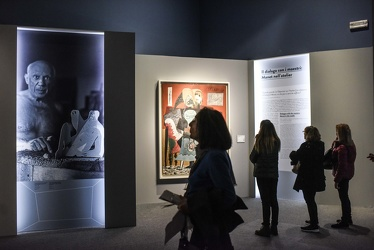 mostra Picasso Ducale 112017-7738
