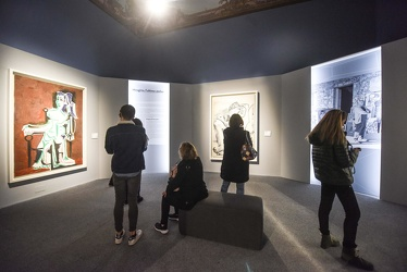 mostra Picasso Ducale 112017-7762