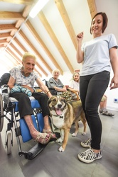 Pet Therapy RSA Doria 25062018-6344